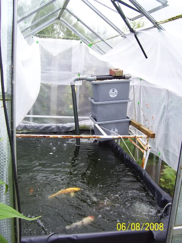 Growing On Pond With Diy Shower Uk Aquatic Plant Society