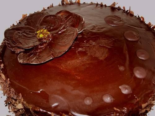 156690_27Oct09_chocolate_orange_cake_close_smallvs.JPG