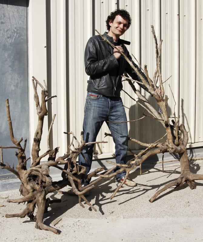 1xxlwoodcrop.jpg