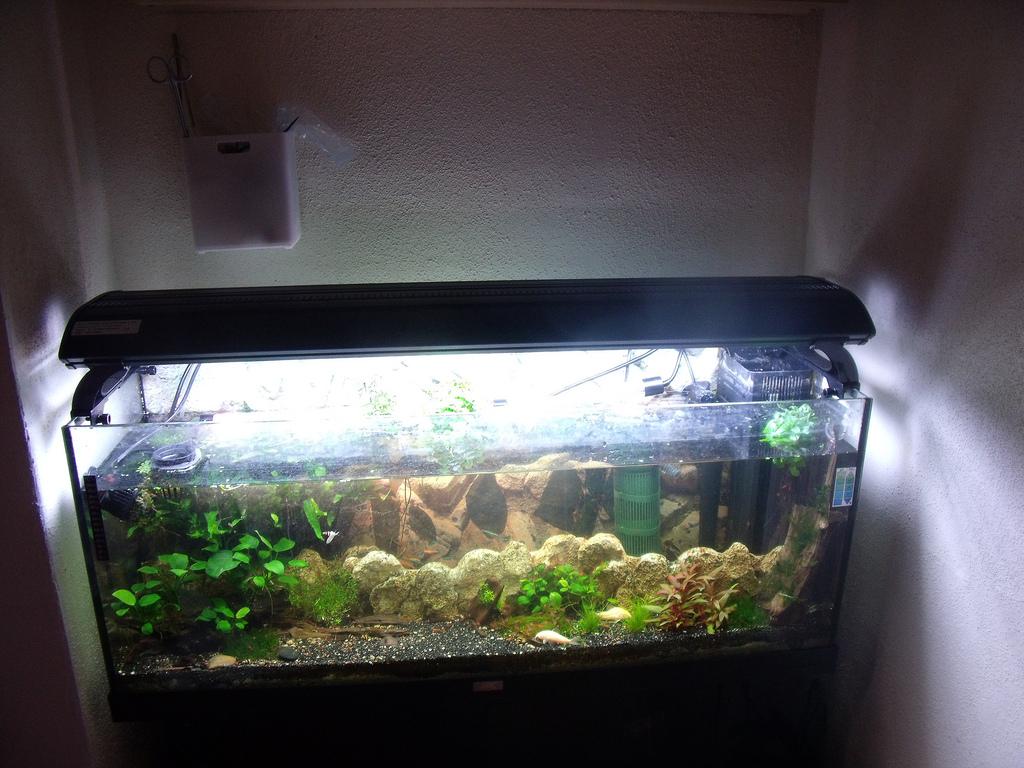 t5 aquarium fish tank overhead light 4 x 39w 100cm cheap. Black Bedroom Furniture Sets. Home Design Ideas