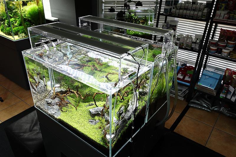 Делаем освещение в аквариуме