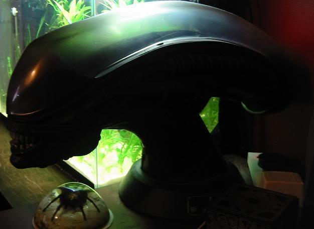alienhead2.jpg