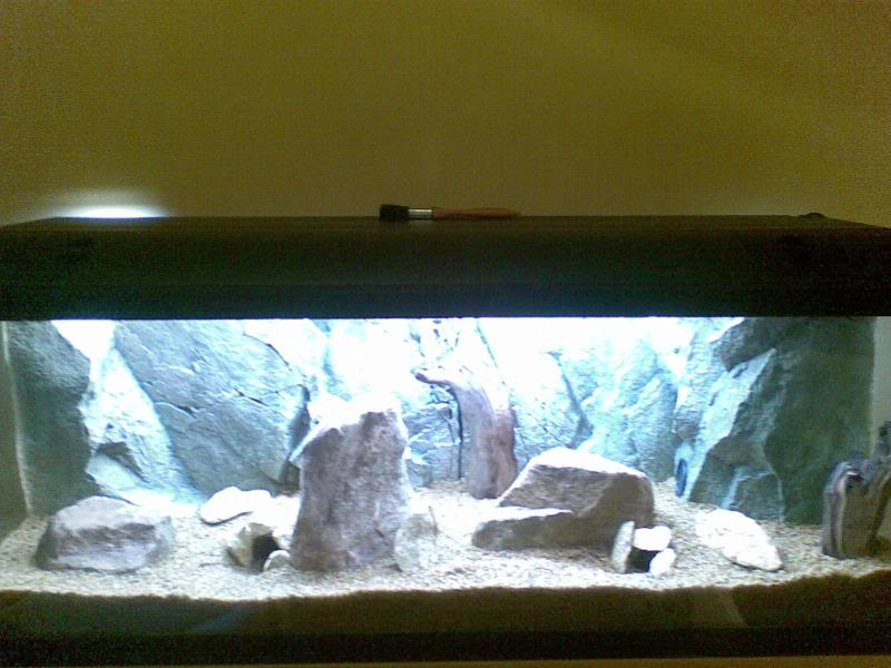 Cavescoveredandsmallrocks.jpg