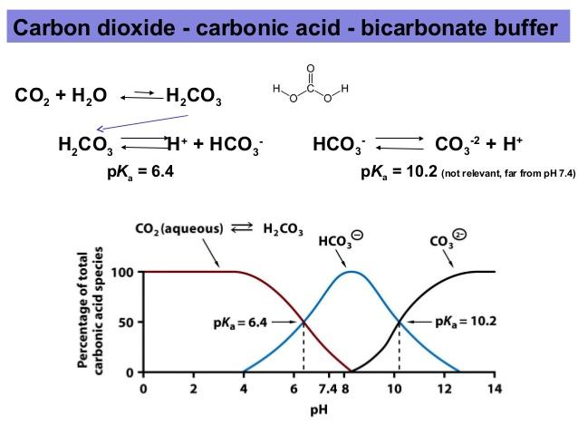 CO2_HCO3_CO3_pH.jpg