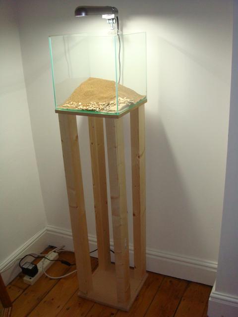 fishtank081.jpg