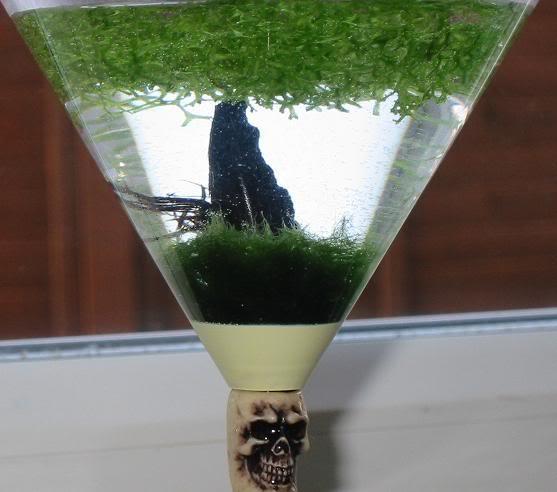 glass6.jpg
