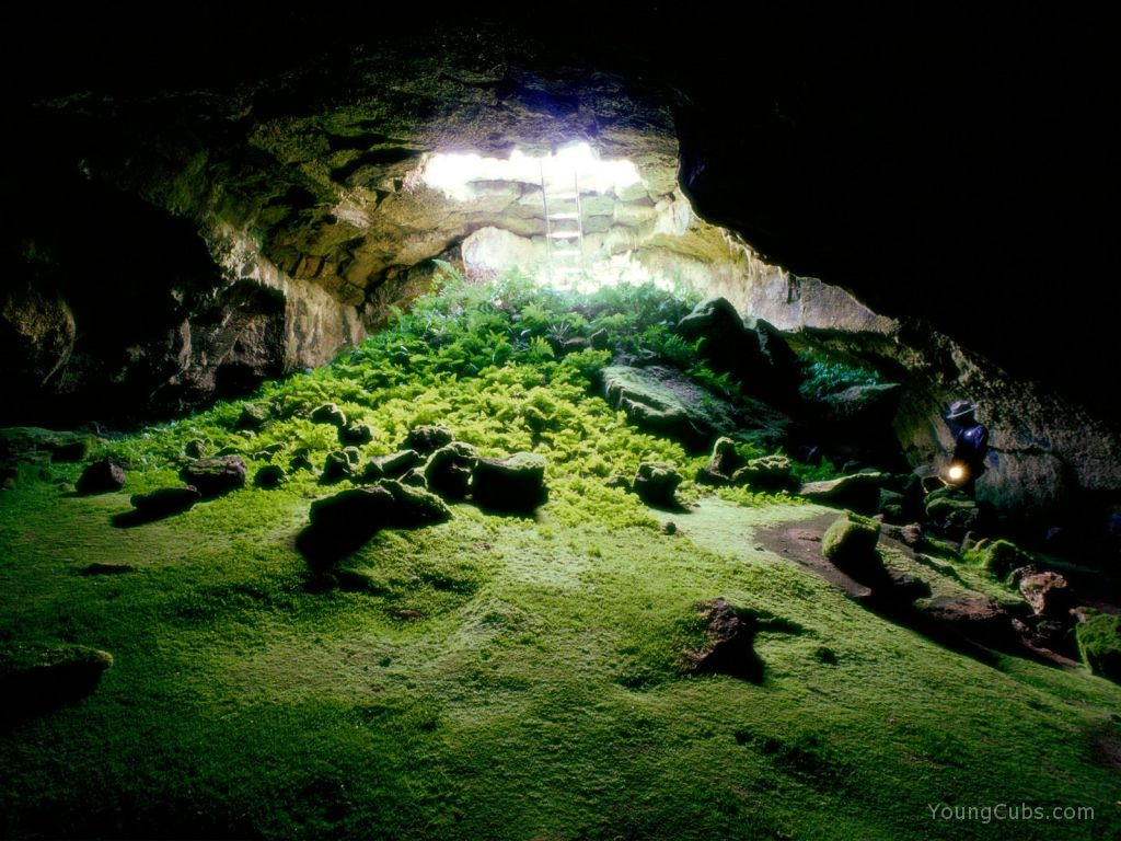 Lava Tube Cave, Lava Beds National Monument,%