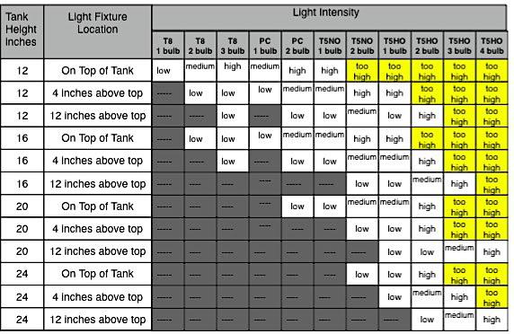 LightIntensity-1.jpg