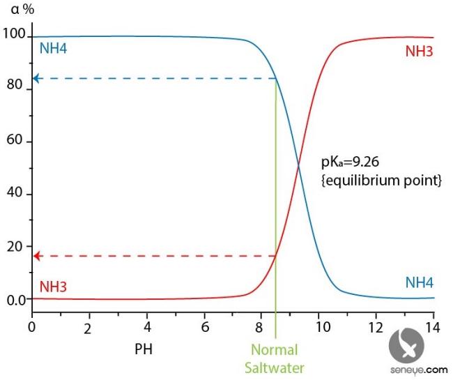 =NH3-NH4_equlibrium.png