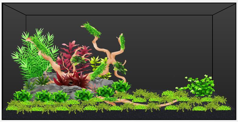 Planted Scape with mini landscape rock.png