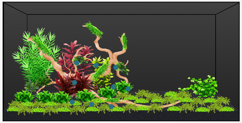 Planted Scape with only driftwood.png