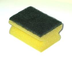 sponge250.jpg