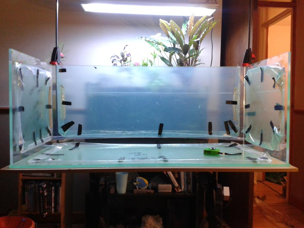 Fish tank acrylic - Tankphotos009_zps1c6aae24 Jpg