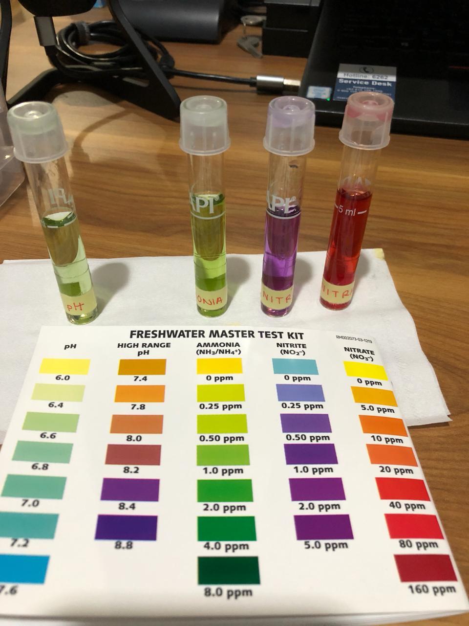 Water parameter test 3rd Day.jpeg