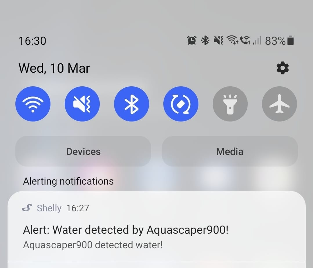 WhatsApp Image 2021-03-12 at 17.13.36.jpeg